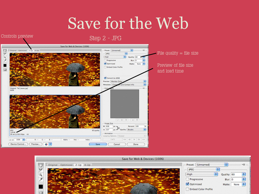 Save for the Web Step 2 - JPG Controls preview ...