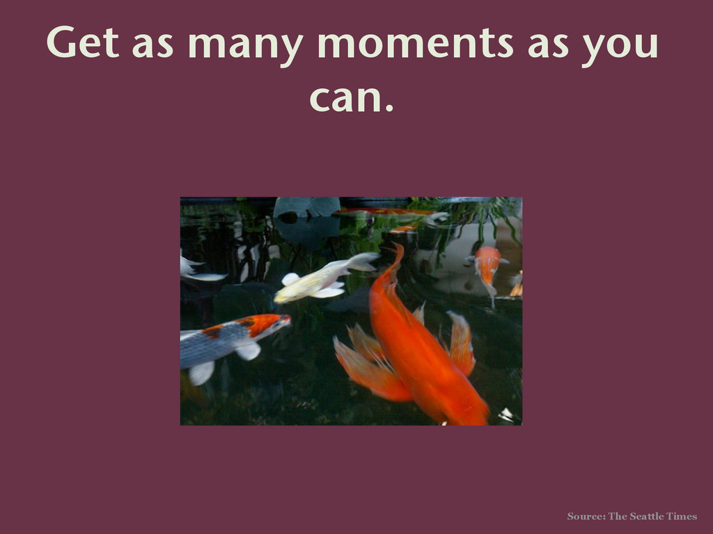 Get as many moments as you can. Source: The Sea...