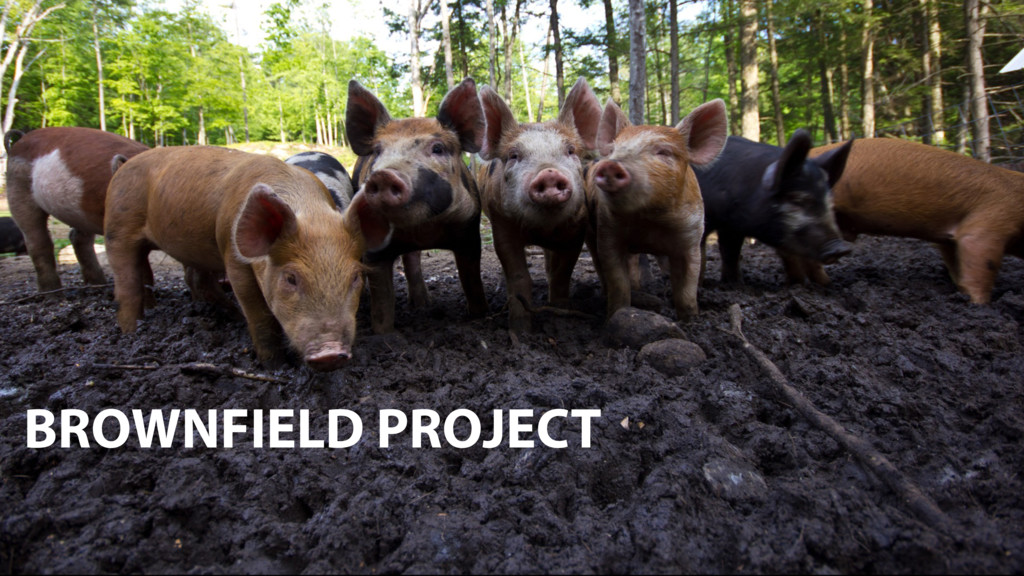 BROWNFIELD PROJECT BROWNFIELD PROJECT