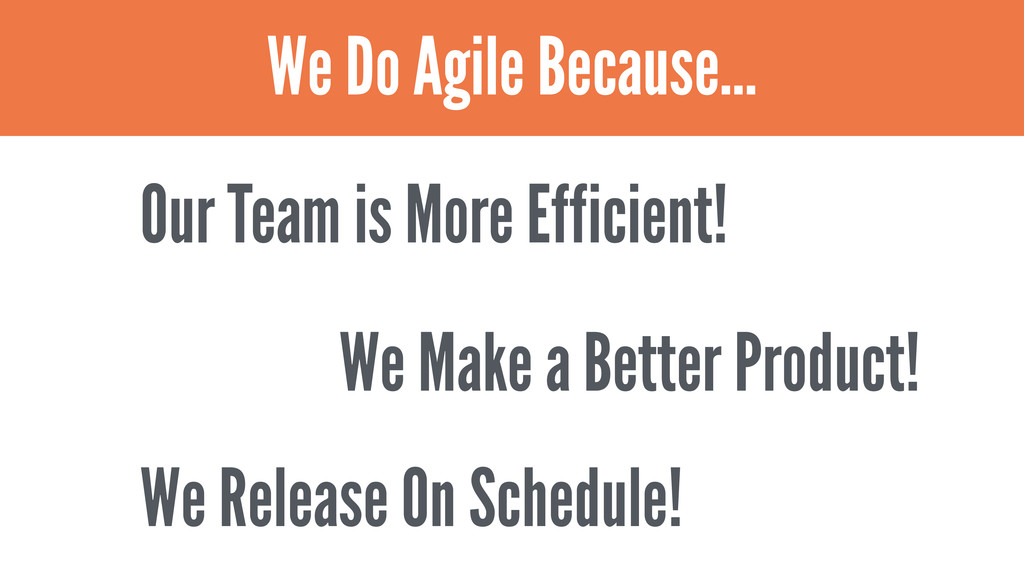 Our Team is More Efficient! We Do Agile Because...