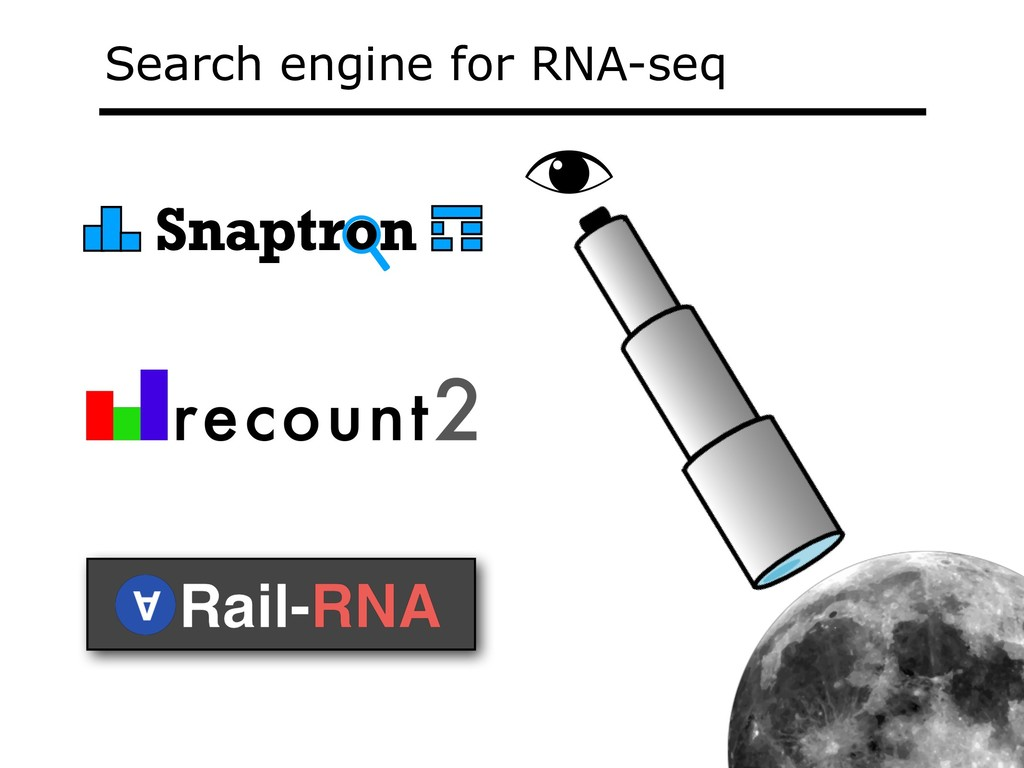 Search engine for RNA-seq Snaptron