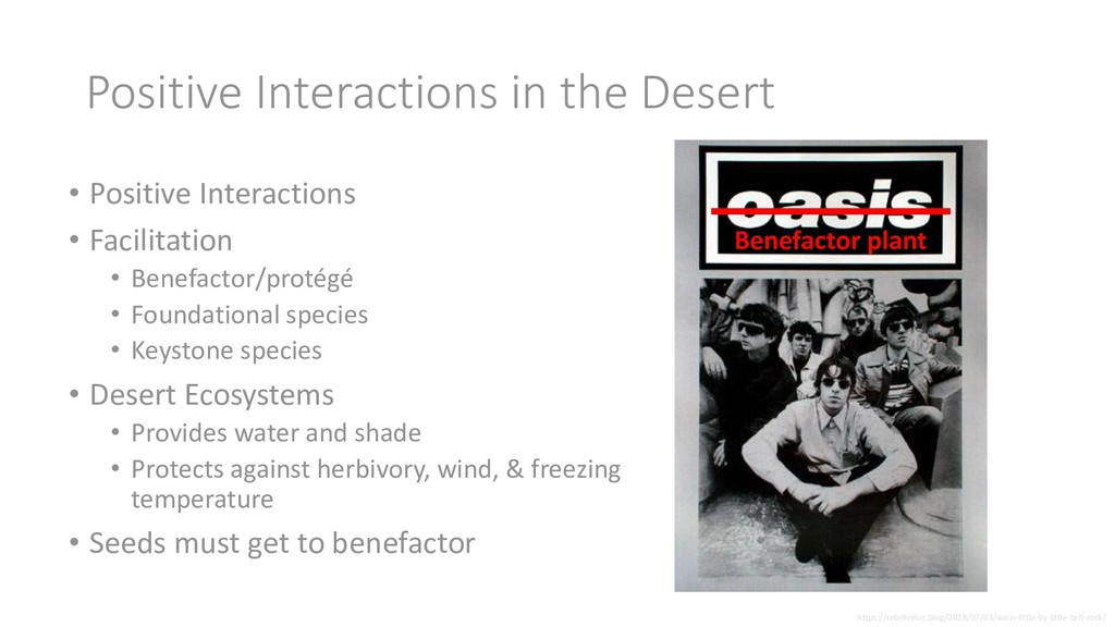 Positive Interactions in the Desert • Positive ...