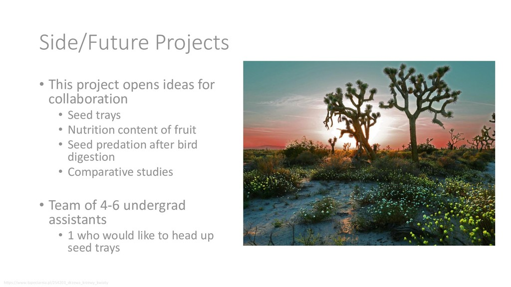 Side/Future Projects • This project opens ideas...