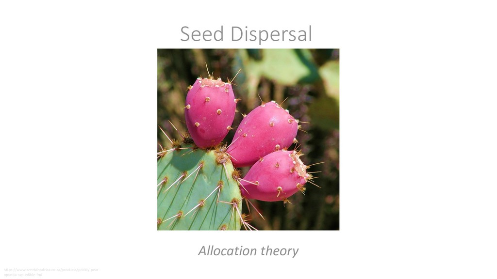 Seed Dispersal Allocation theory https://www.se...