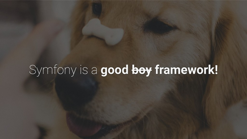 good boy framework!