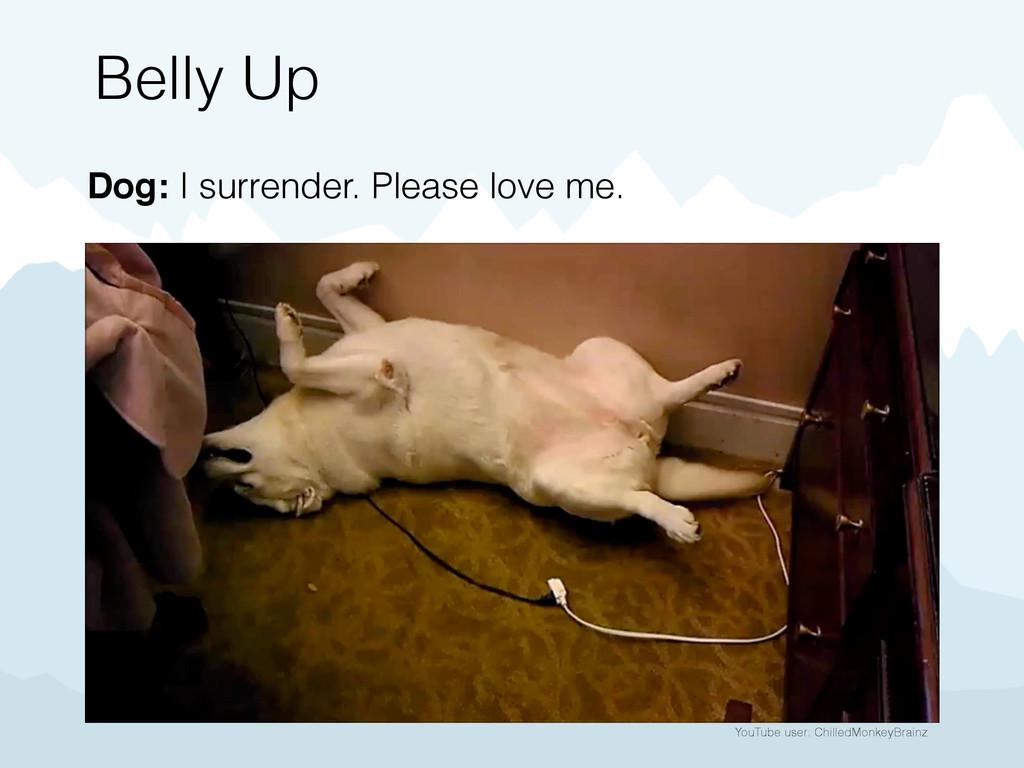 YouTube user: ChilledMonkeyBrainz Belly Up Dog:...