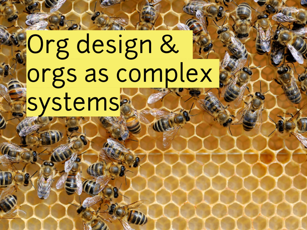 Org design & orgs as complex systems