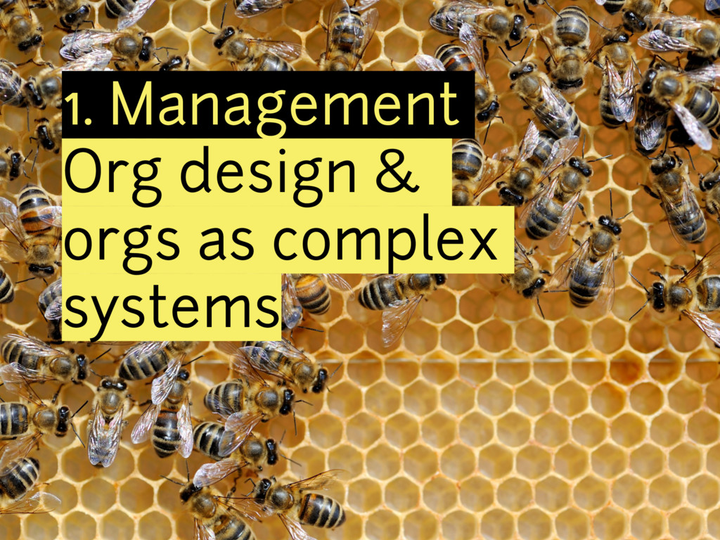 1. Management Org design & orgs as complex syst...