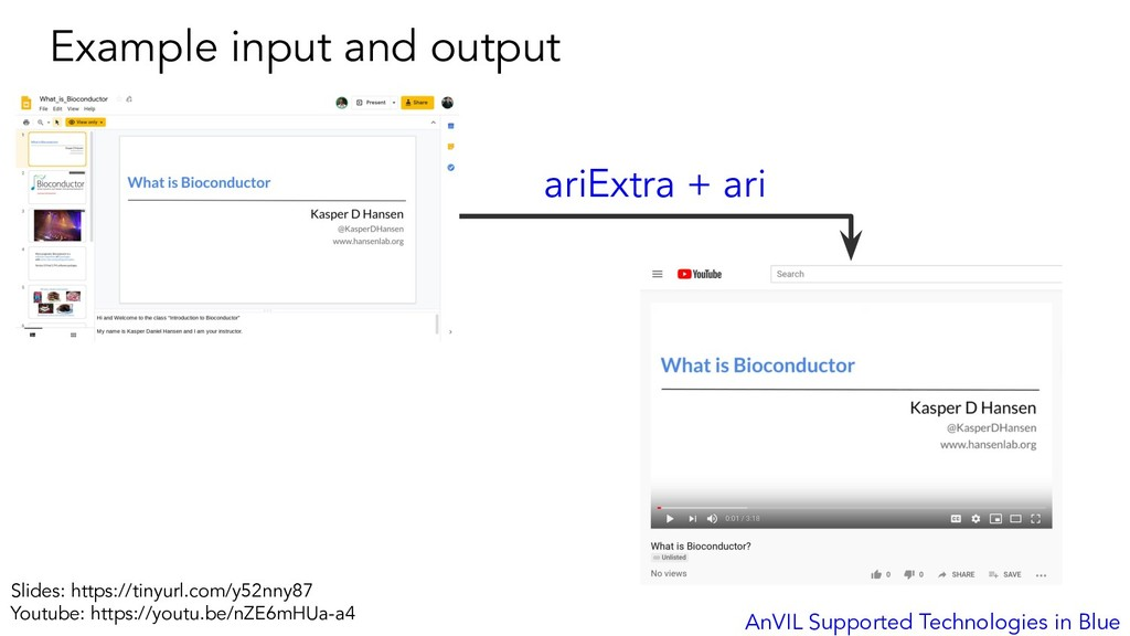 Example input and output AnVIL Supported Techno...