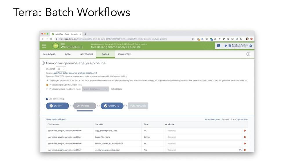 Terra: Batch Workflows