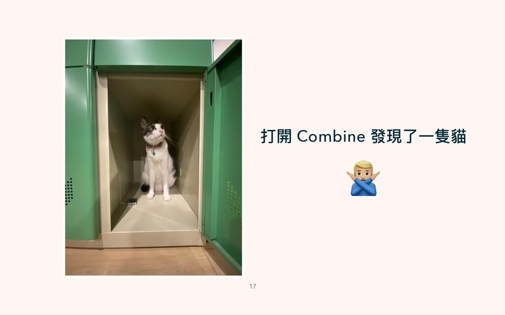 17 打開 Combine 發現了⼀隻貓