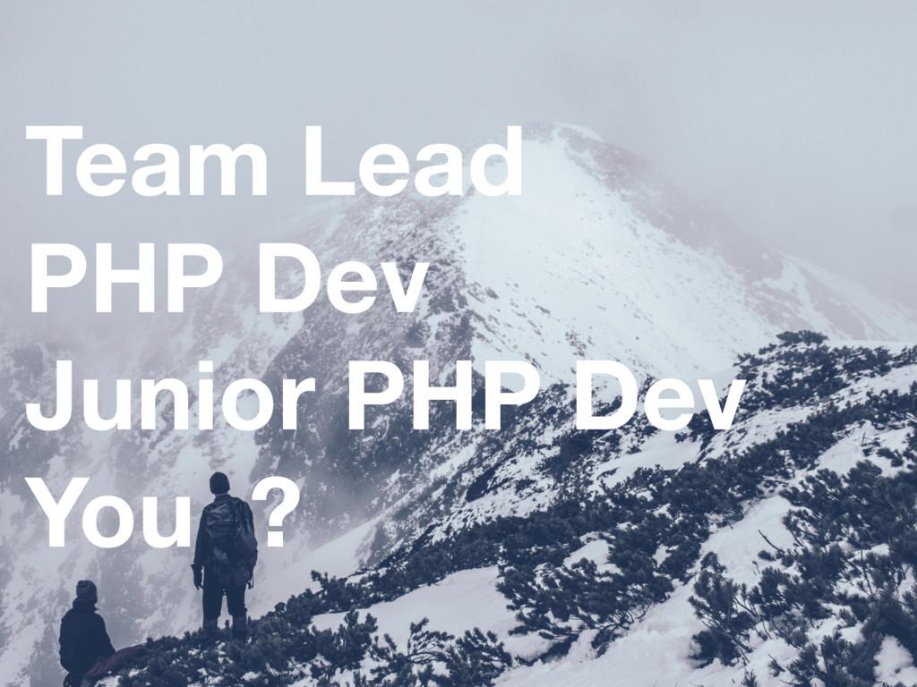 Team Lead PHP Dev Junior PHP Dev You ?