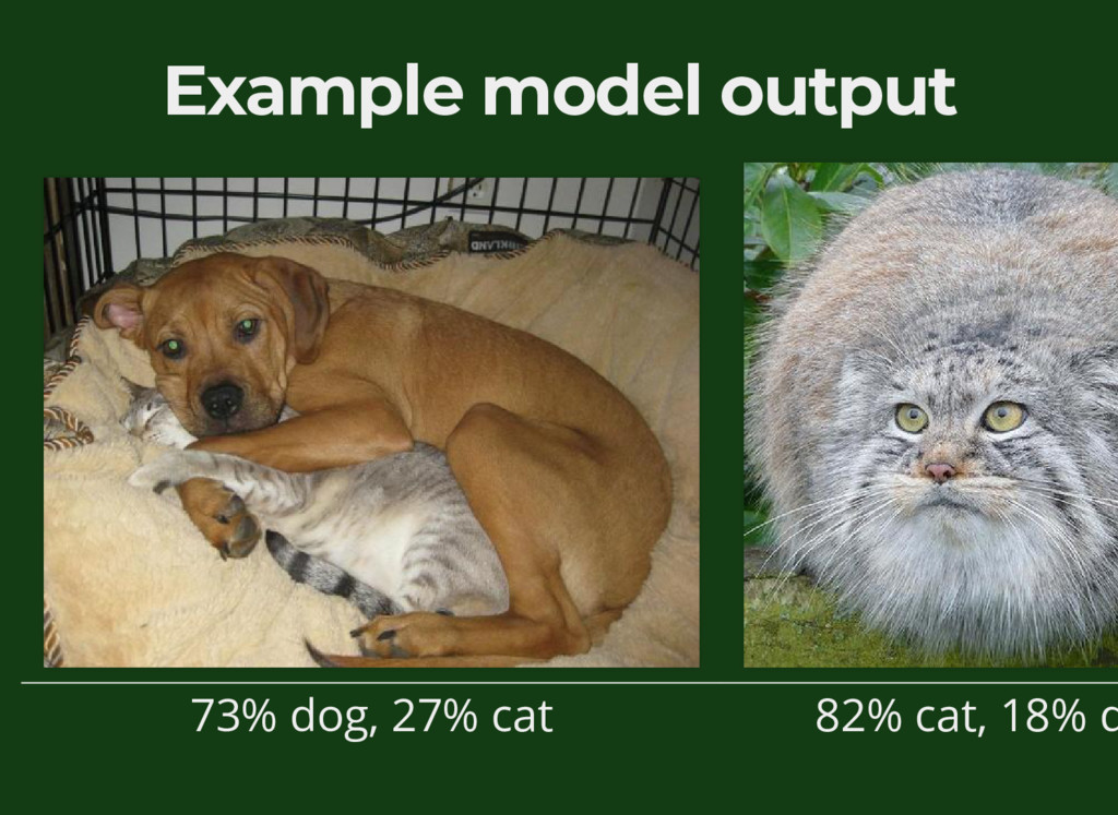 Example model output 73% dog, 27% cat 82% cat, ...