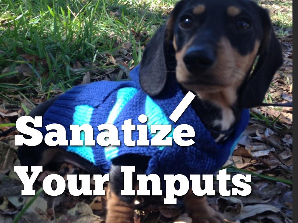 Sanatize Your Inputs