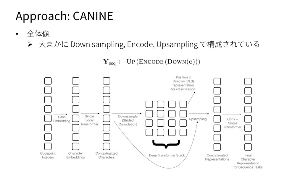 Approach: CANINE • 全体像 Ø ⼤まかに Down sampling, En...