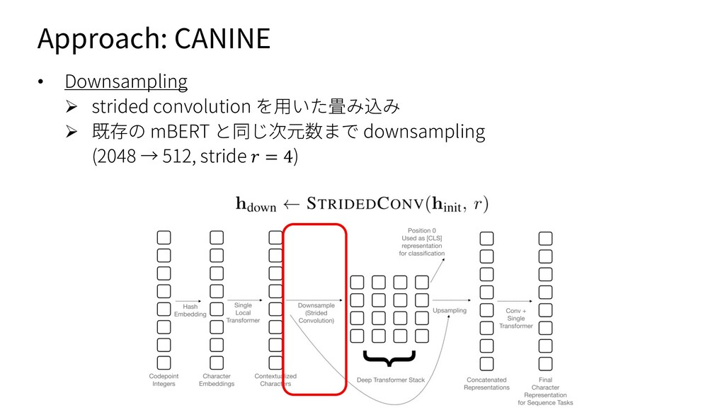 Approach: CANINE • Downsampling Ø strided convo...