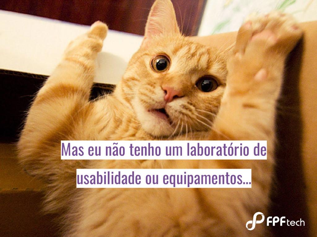 Mas eu não tenho um laboratório de usabilidade ...