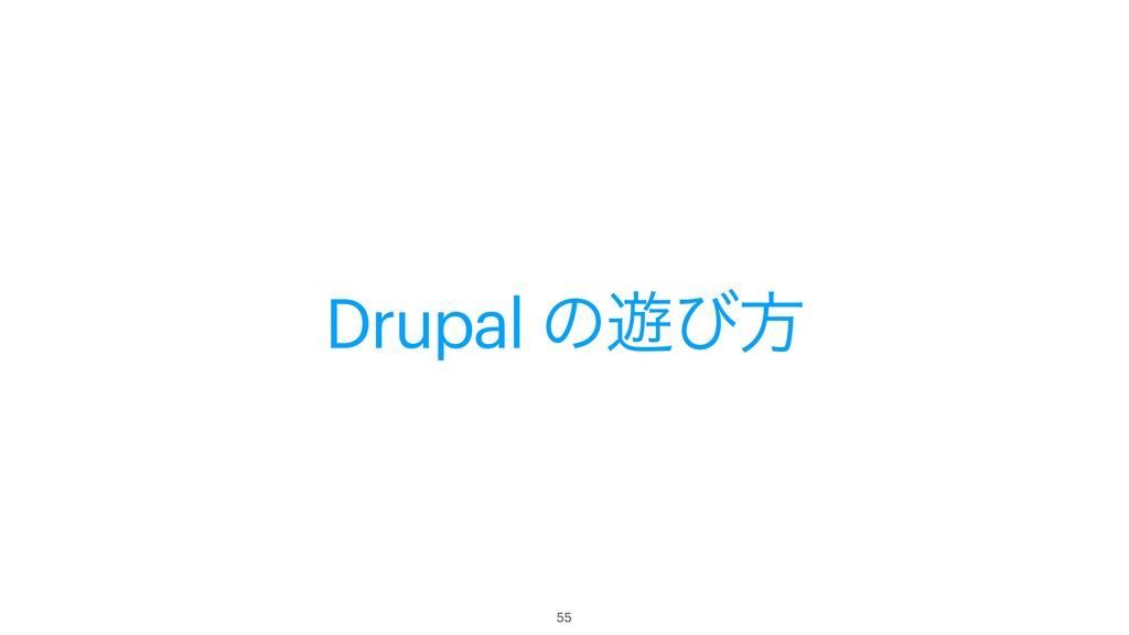 Drupal ͷ༡ͼํ 55