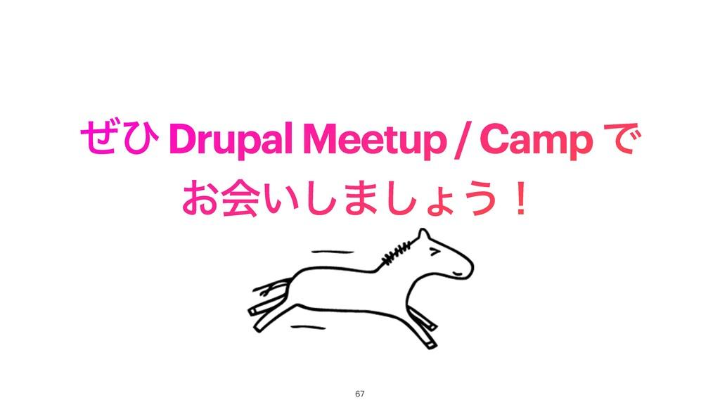 ͥͻ Drupal Meetup / Camp Ͱ ͓ձ͍͠·͠ΐ͏ʂ 67