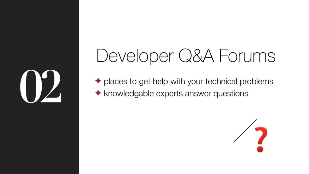 02 Developer Q&A Forums ✦ places to get help wi...