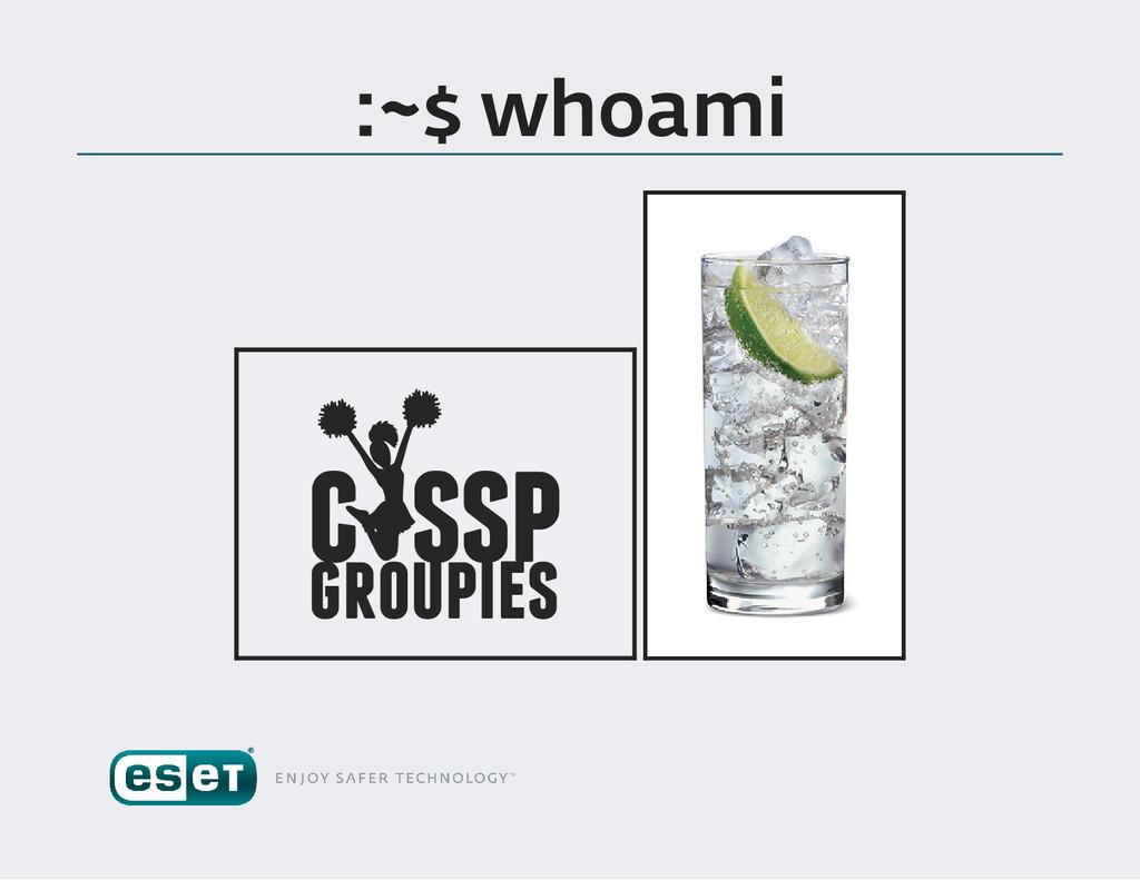 :~$ whoami