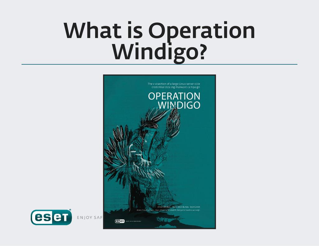What is Operation Windigo ?