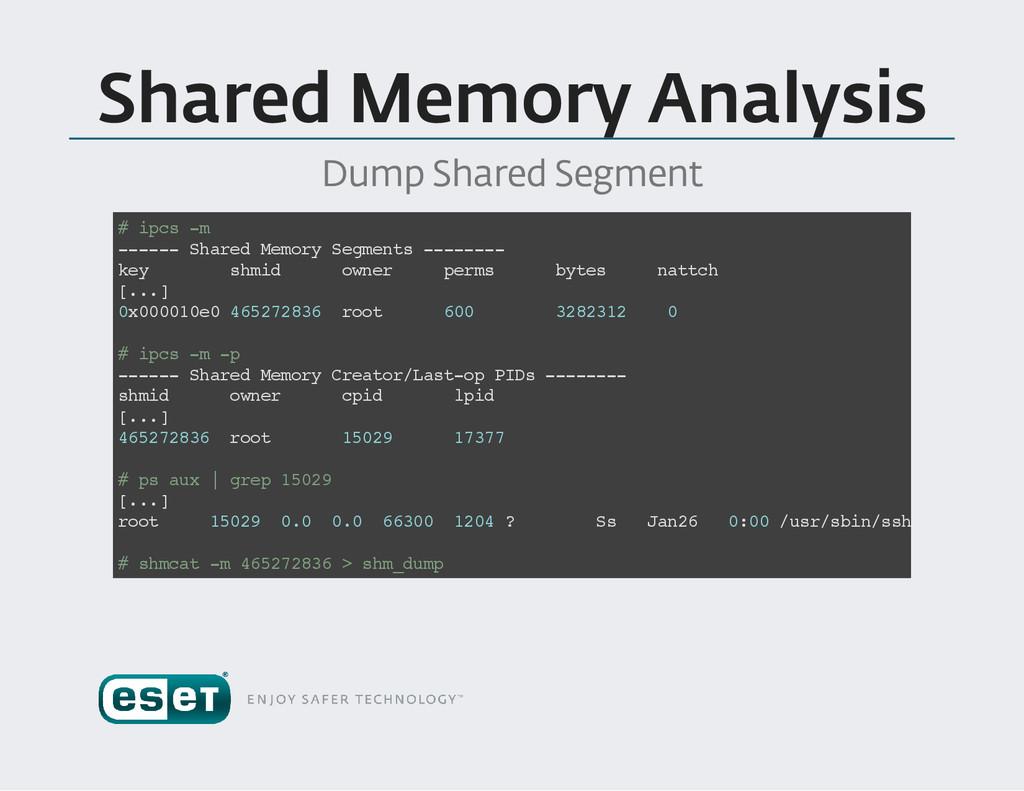 Shared Memory Analysis Dump Shared Segment # i ...