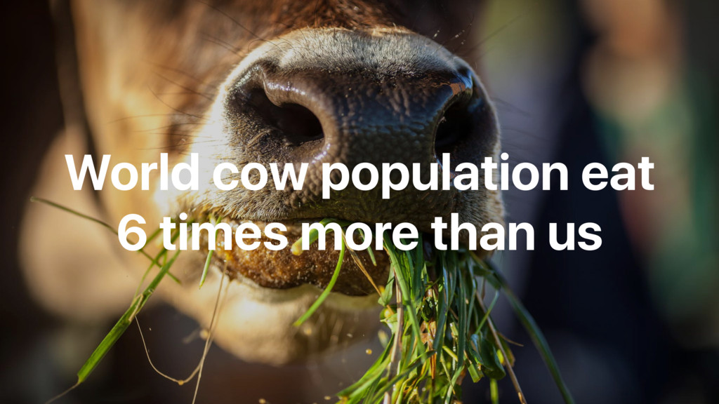 World cow population eat 6 times more than us