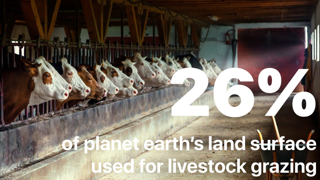 26% of planet earth's land surface used for li...