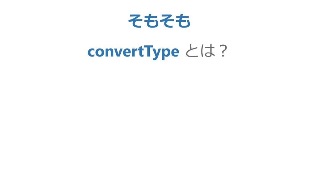 そもそも convertType とは?