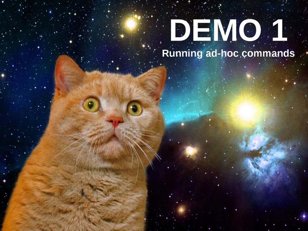 DEMO 1 Running ad-hoc commands