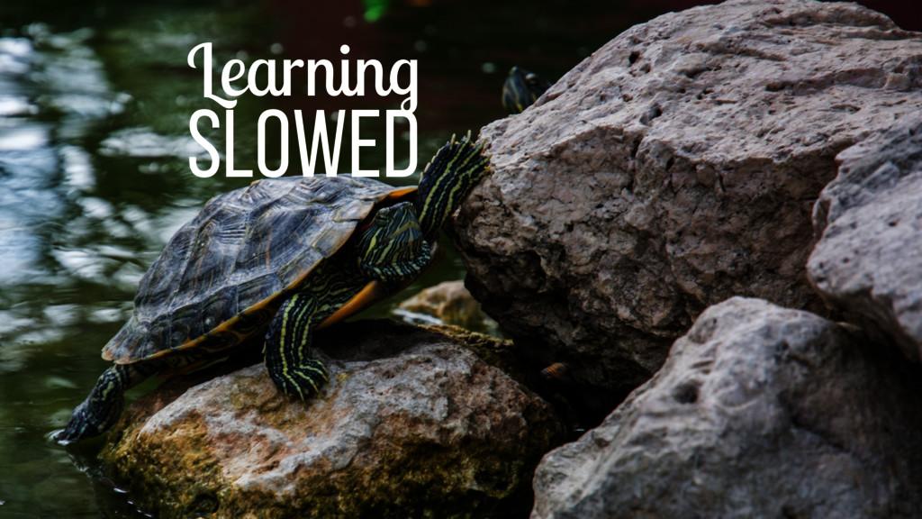 Learning slowed