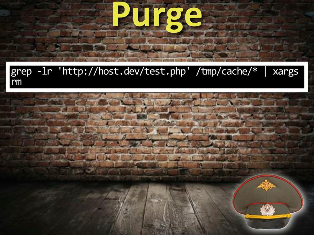 grep%3lr%'http://host.dev/test.php'%/tmp/cache/...