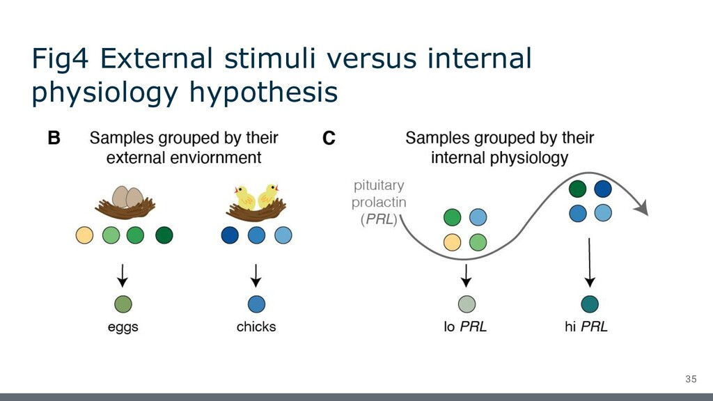 Fig4 External stimuli versus internal physiolog...