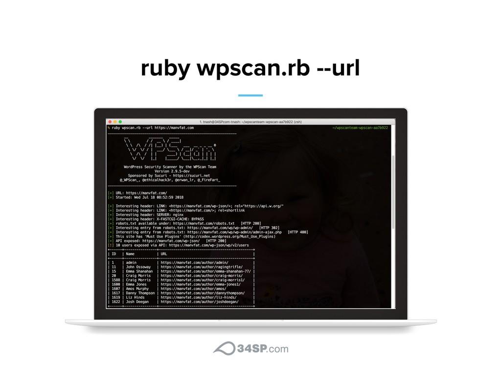 ruby wpscan.rb --url