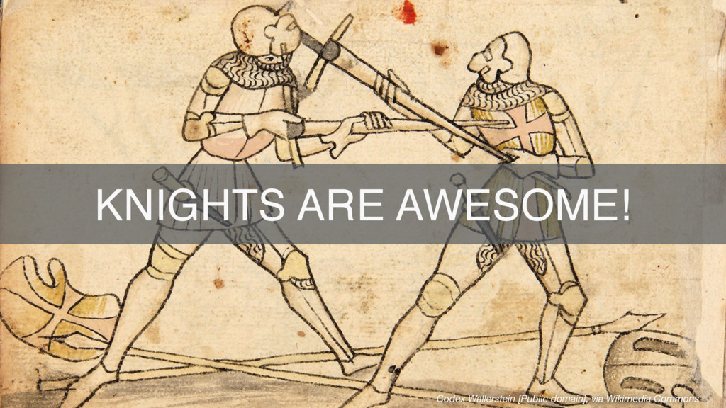 KNIGHTS ARE AWESOME! Codex Wallerstein [Public ...