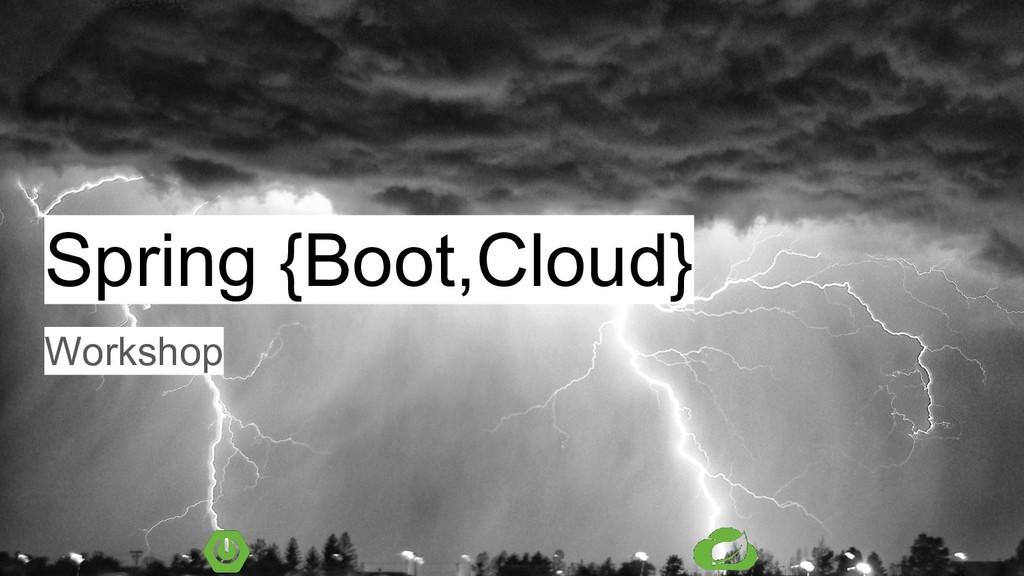 Spring {Boot,Cloud} Workshop