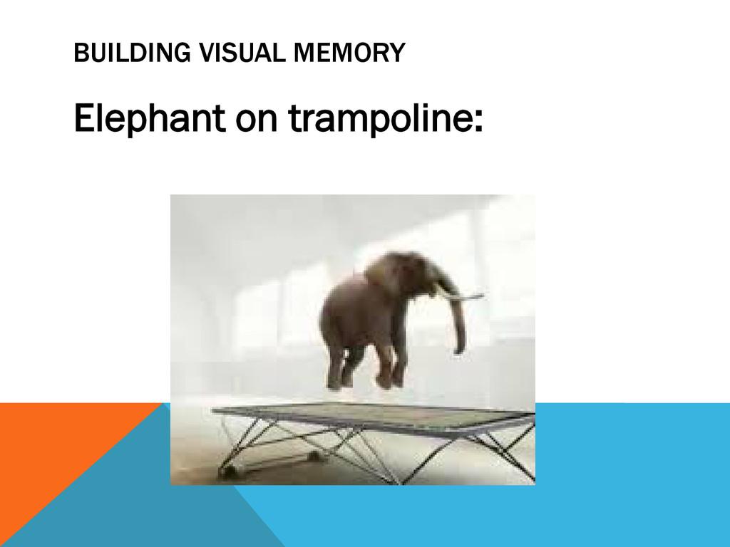 BUILDING VISUAL MEMORY Elephant on trampoline: