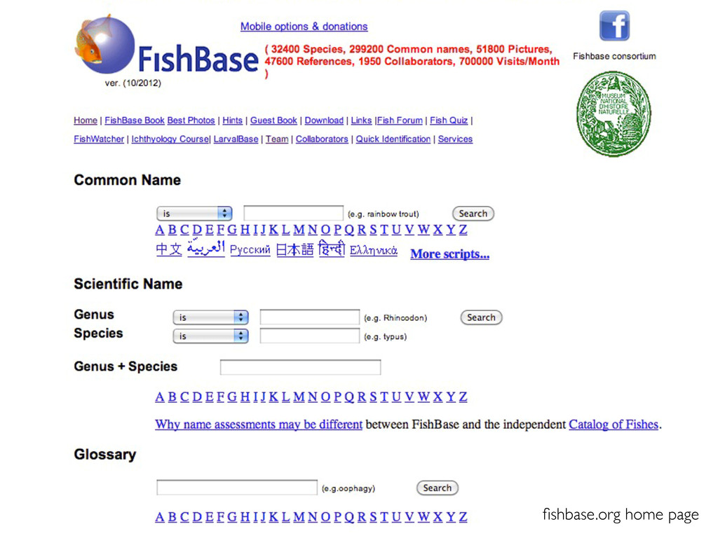 fishbase.org home page