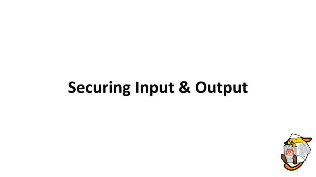 Securing Input & Output