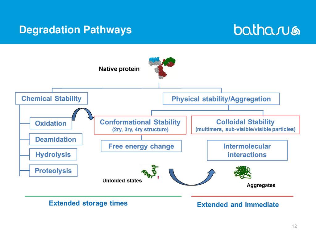 Degradation Pathways 12