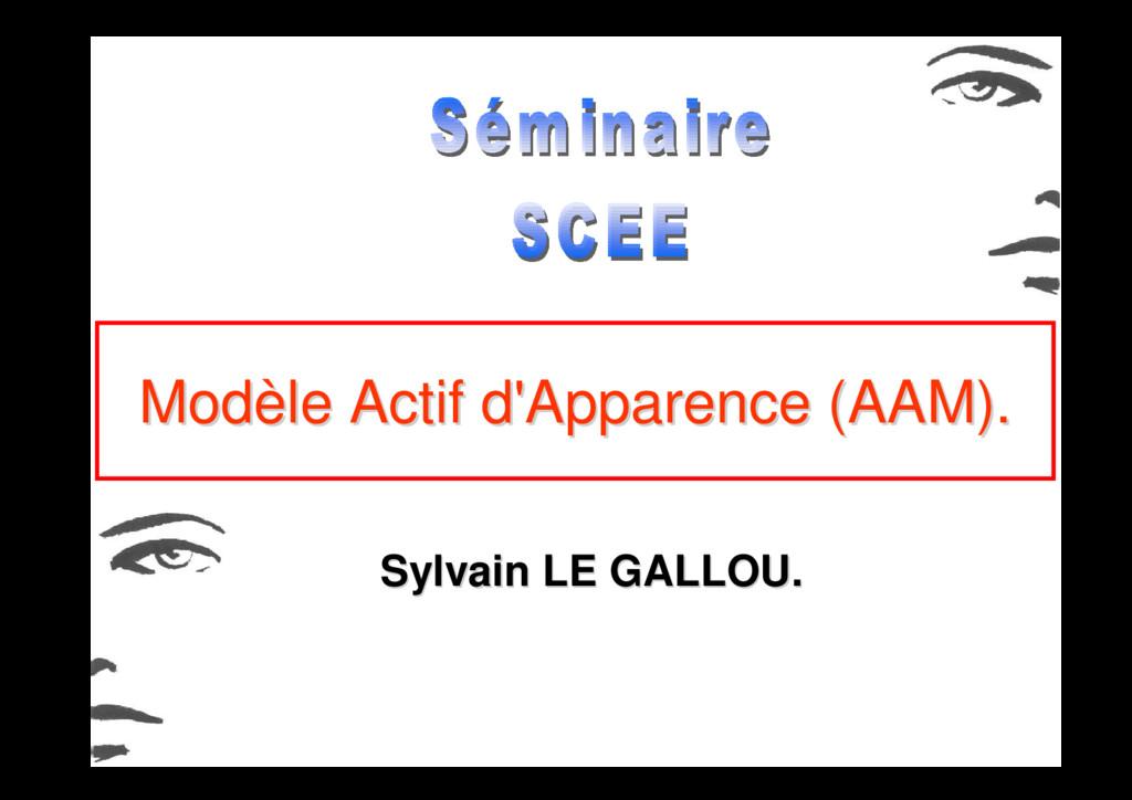 Modèle Actif d'Apparence (AAM). Modèle Actif d'...