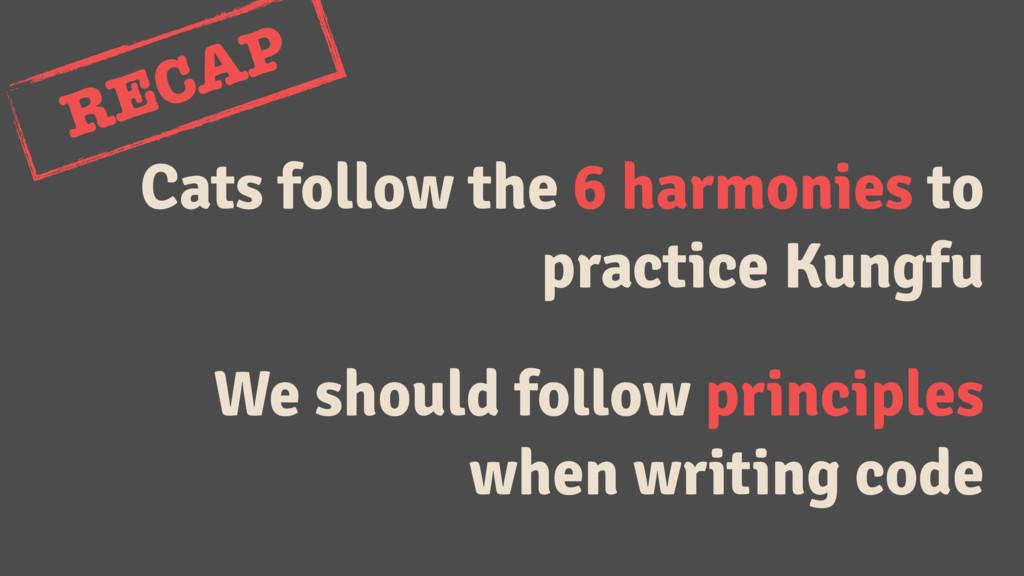 Cats follow the 6 harmonies to practice Kungfu ...
