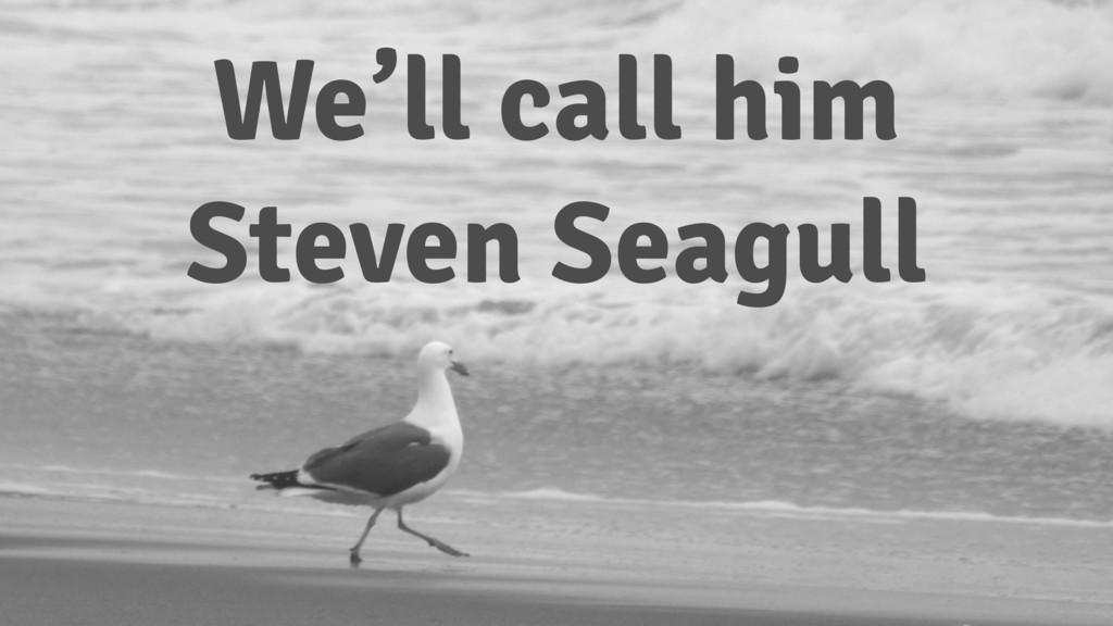 We'll call him Steven Seagull