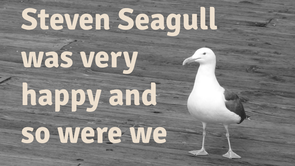 Steven Seagull was very happy and so were we