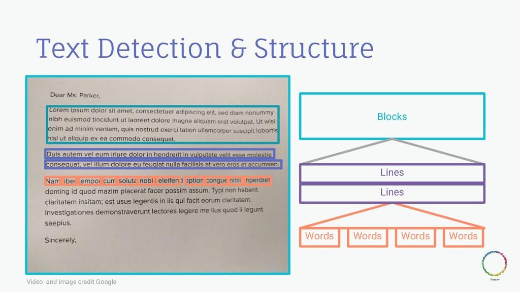 Text Detection & Structure Blocks Lines Words L...