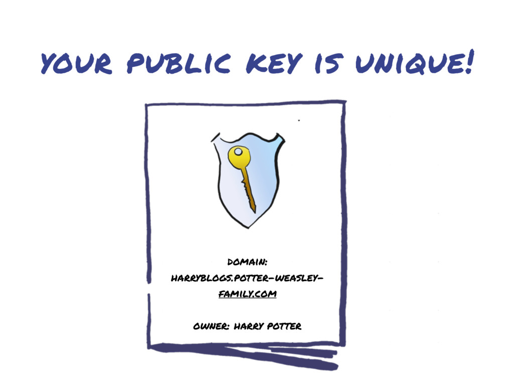your public key is unique! domain: harryblogs.p...