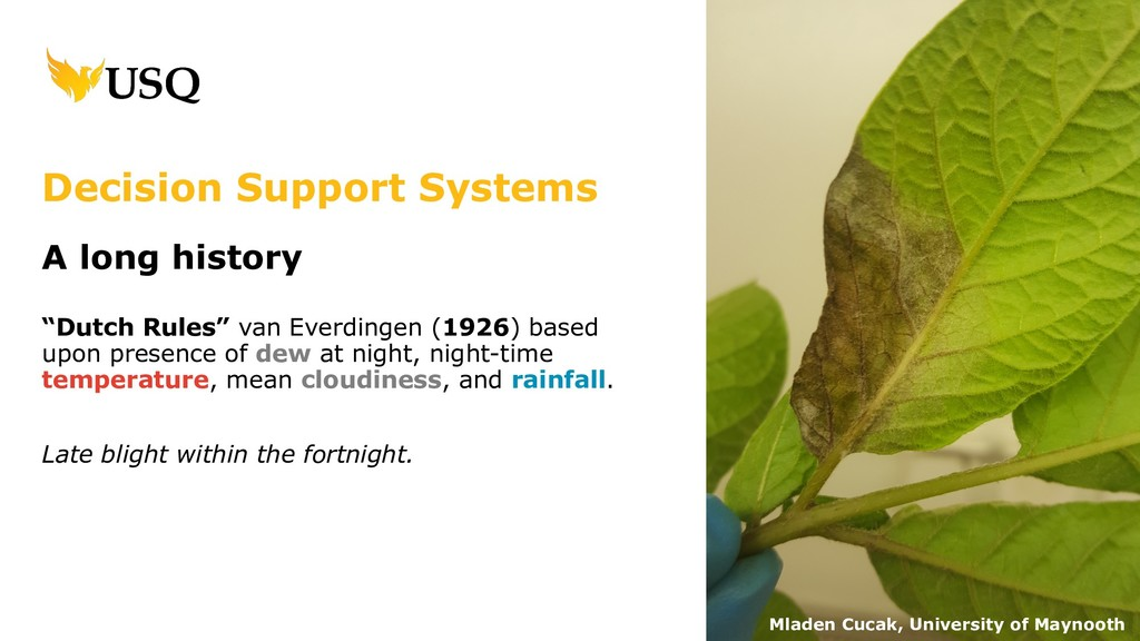 """Decision Support Systems A long history """"Dutch ..."""