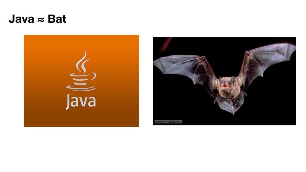 Java ≈ Bat