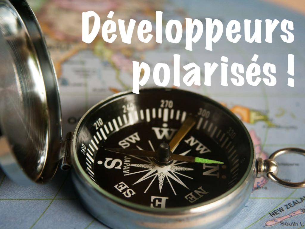 Développeurs polarisés !
